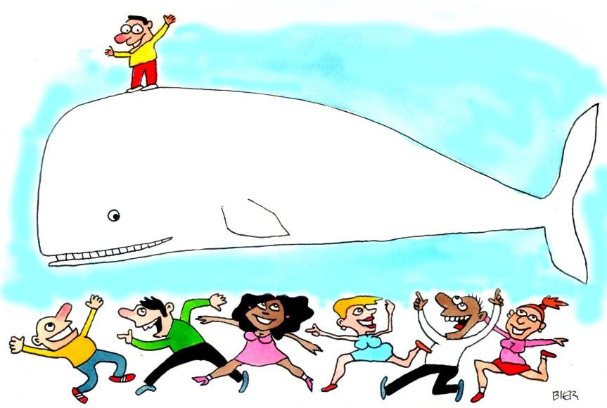 nova baleia